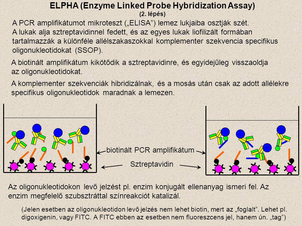 ELPHA (Enzyme Linked Probe Hybridization Assay)