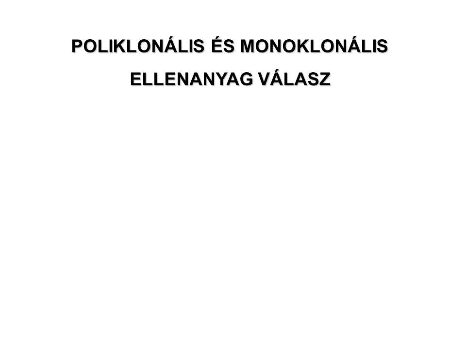 POLIKLONÁLIS ÉS MONOKLONÁLIS