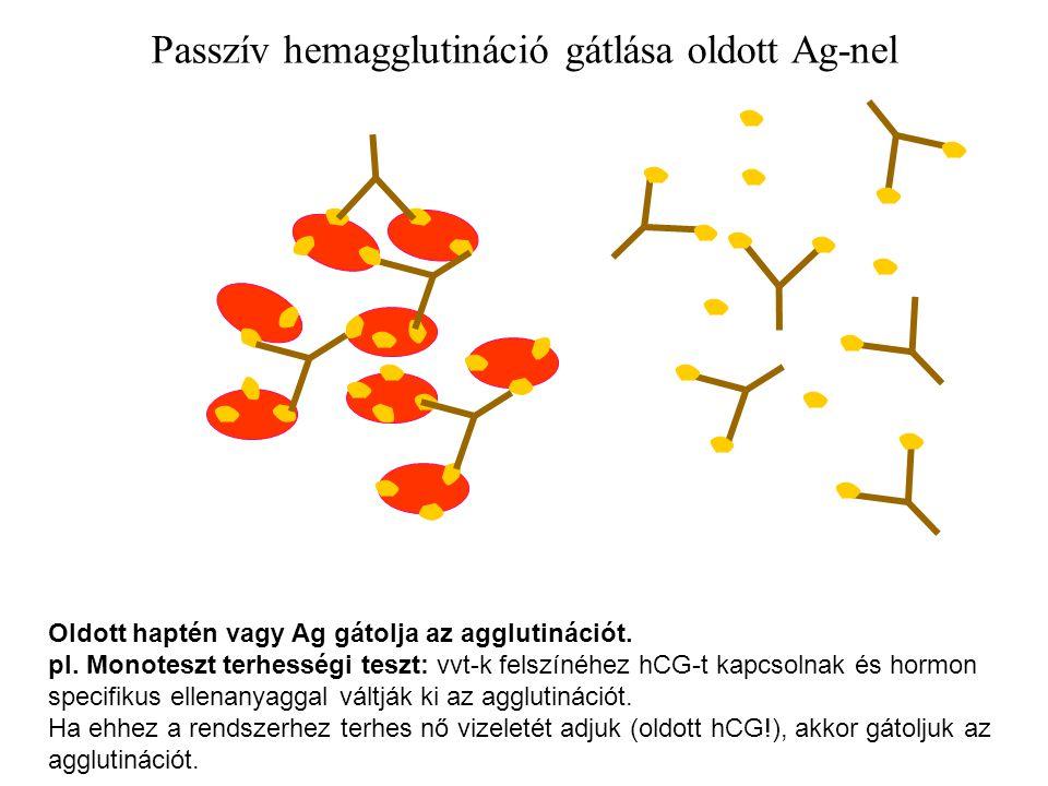 Passzív hemagglutináció gátlása oldott Ag-nel