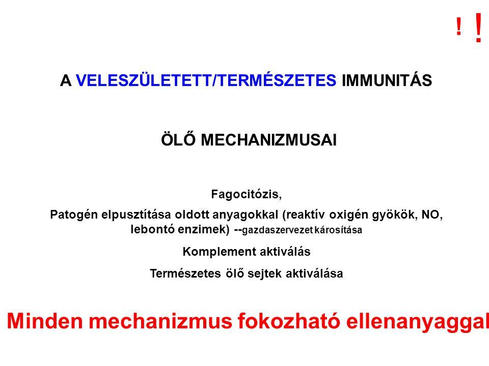 ! ! Minden mechanizmus fokozható ellenanyaggal