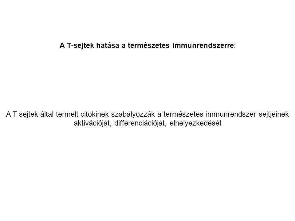 A T-sejtek hatása a természetes immunrendszerre: