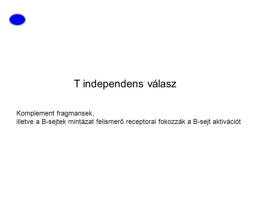 T independens válasz Komplement fragmansek,
