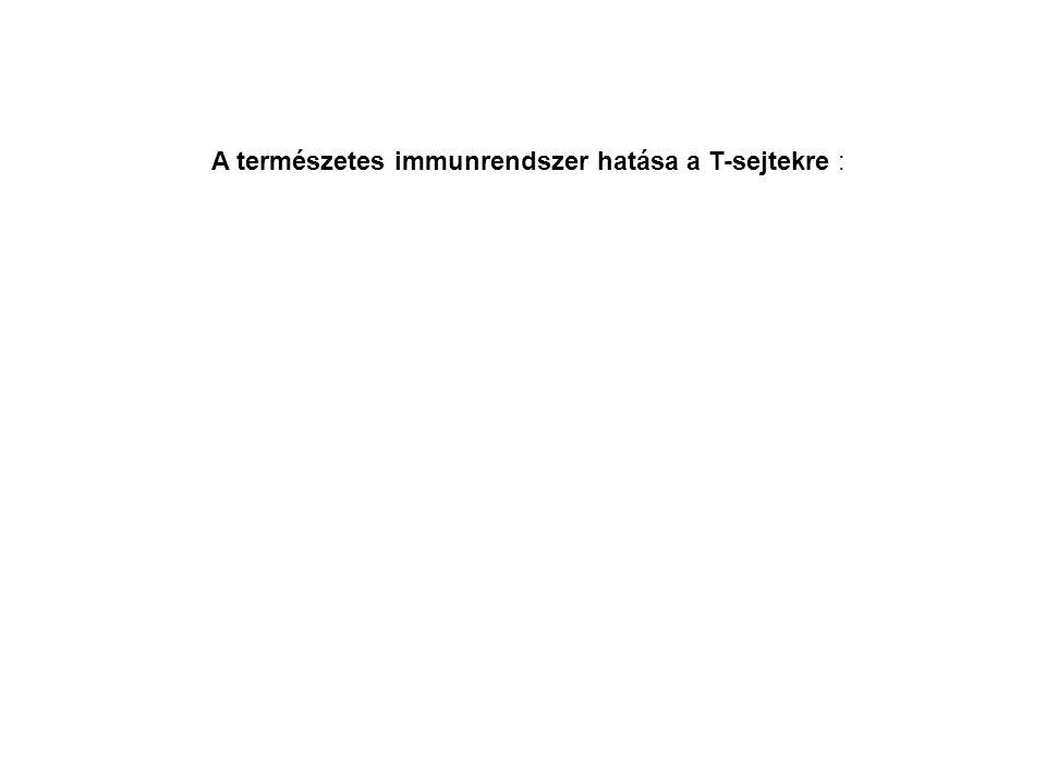 A természetes immunrendszer hatása a T-sejtekre :