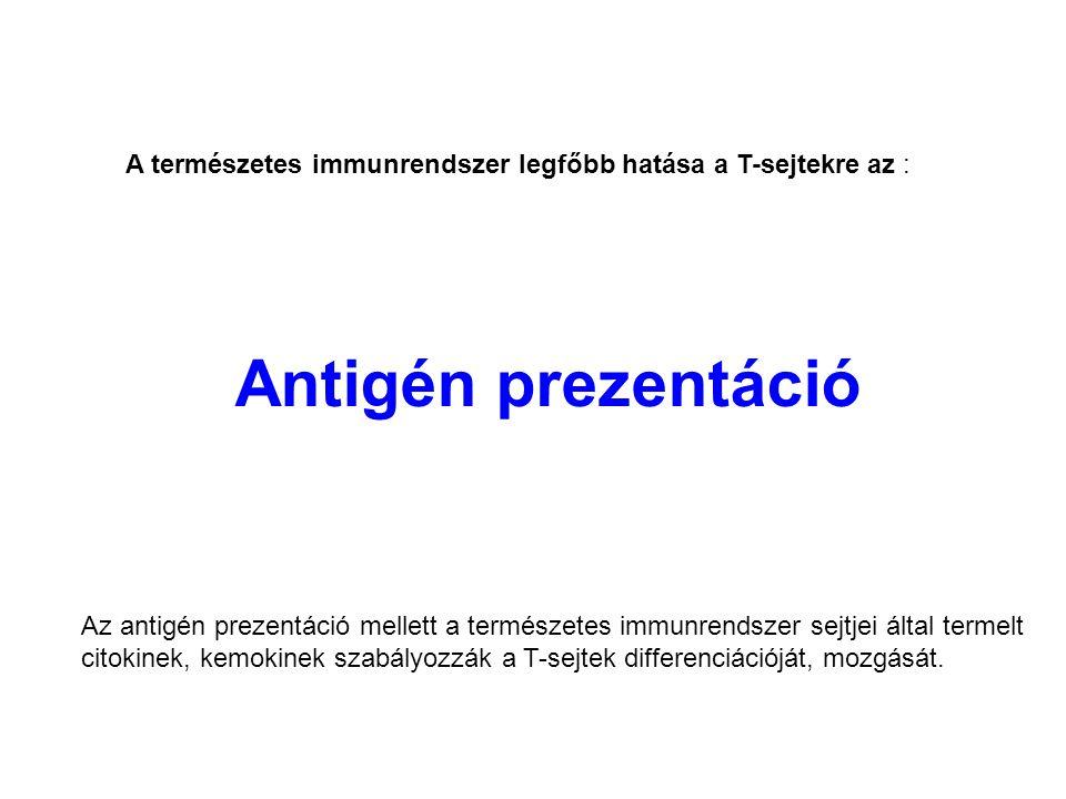 A természetes immunrendszer legfőbb hatása a T-sejtekre az :