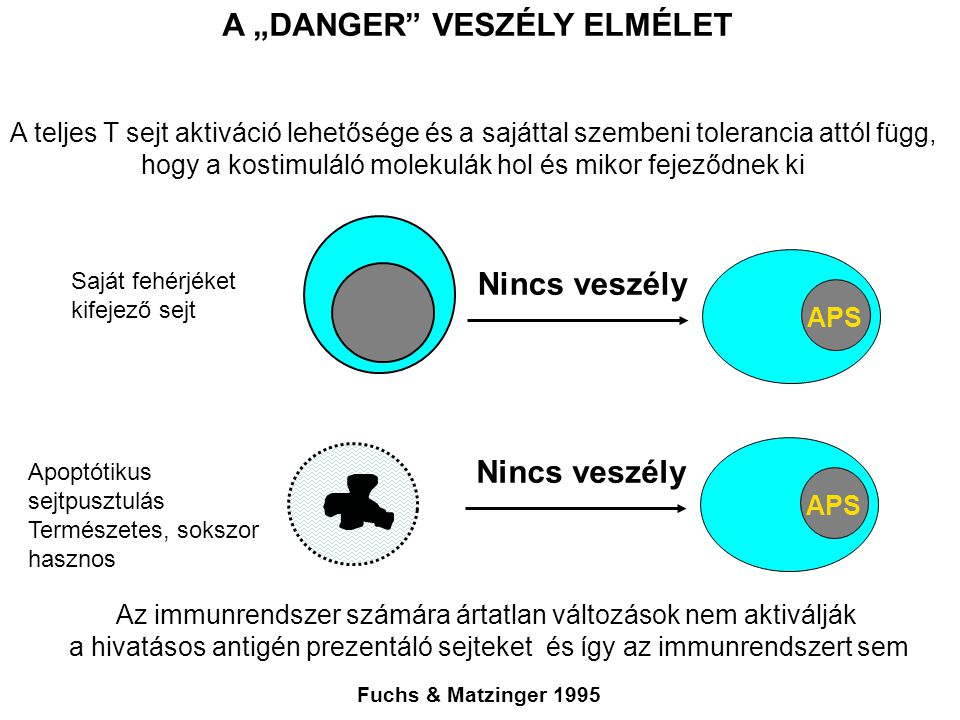 "A ""DANGER VESZÉLY ELMÉLET"
