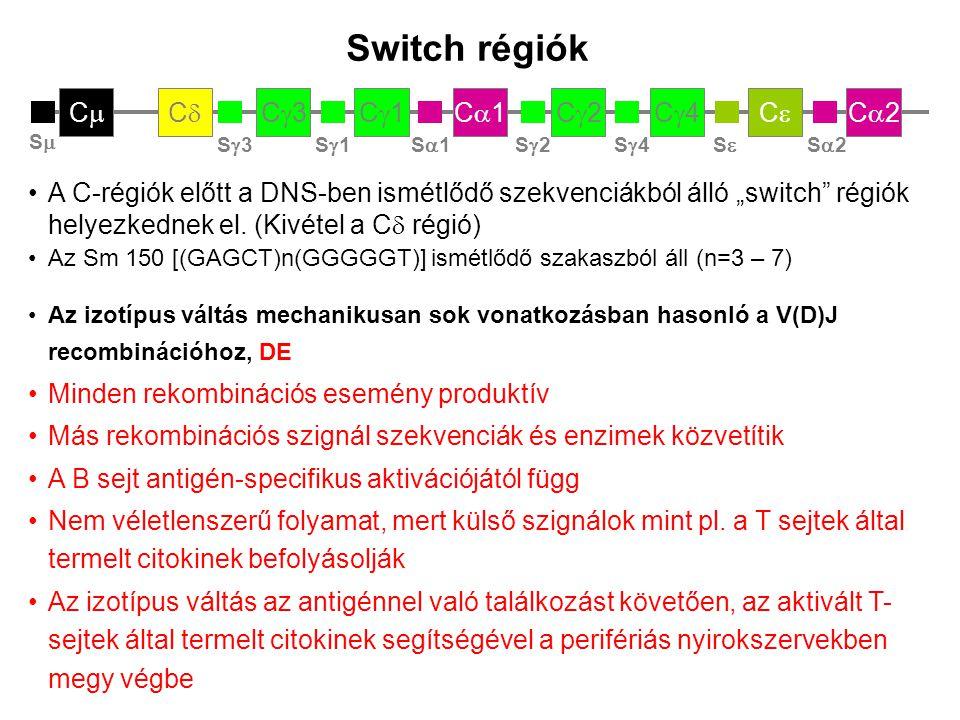 Switch régiók Ca2 Ce Cg4 Cg2 Ca1 Cg1 Cg3 Cd Cm