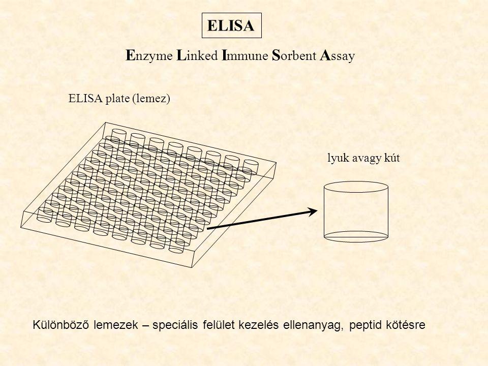 Enzyme Linked Immune Sorbent Assay