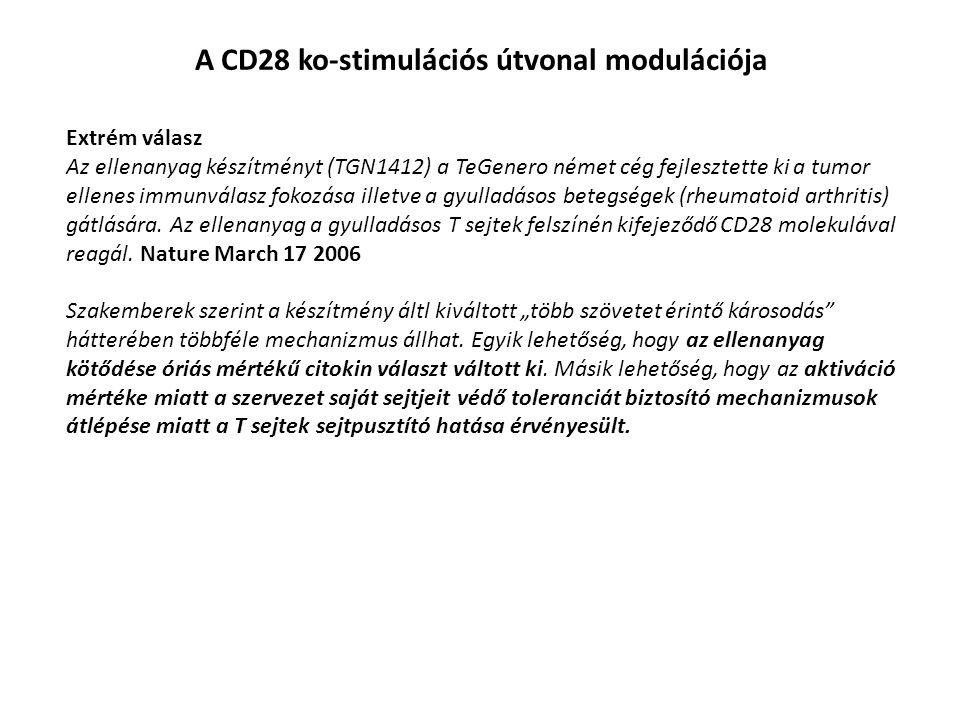 A CD28 ko-stimulációs útvonal modulációja