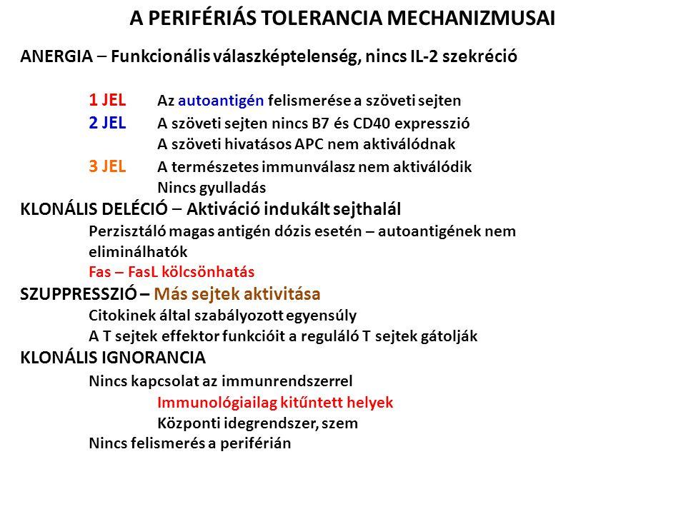 A PERIFÉRIÁS TOLERANCIA MECHANIZMUSAI