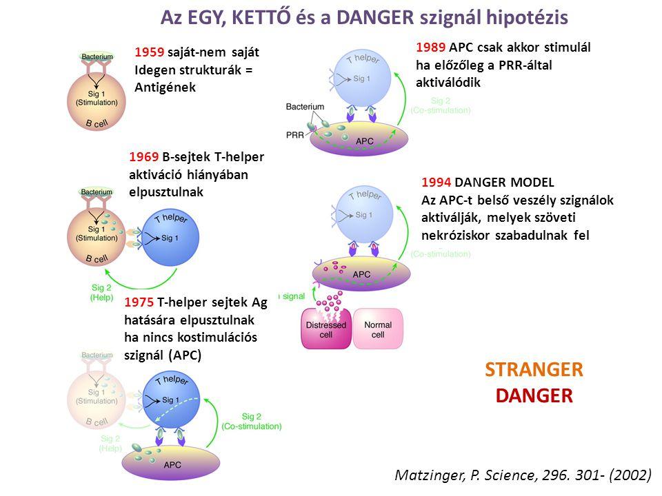 Az EGY, KETTŐ és a DANGER szignál hipotézis