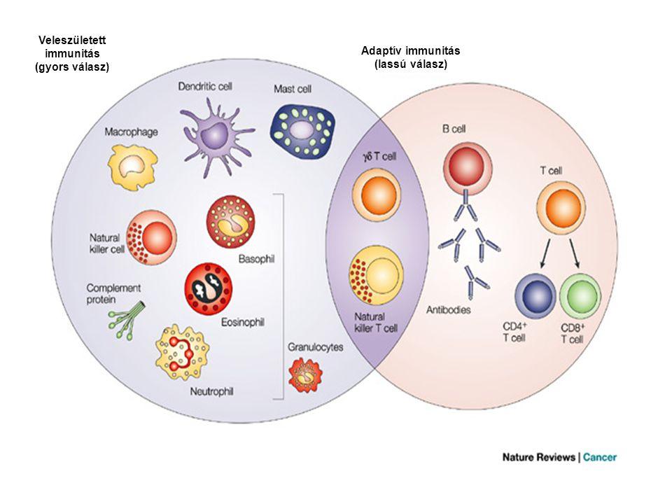 Veleszületett immunitás