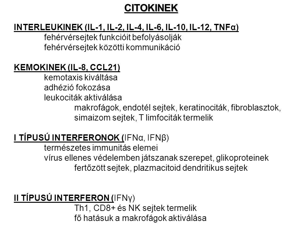 CITOKINEK INTERLEUKINEK (IL-1, IL-2, IL-4, IL-6, IL-10, IL-12, TNFα)