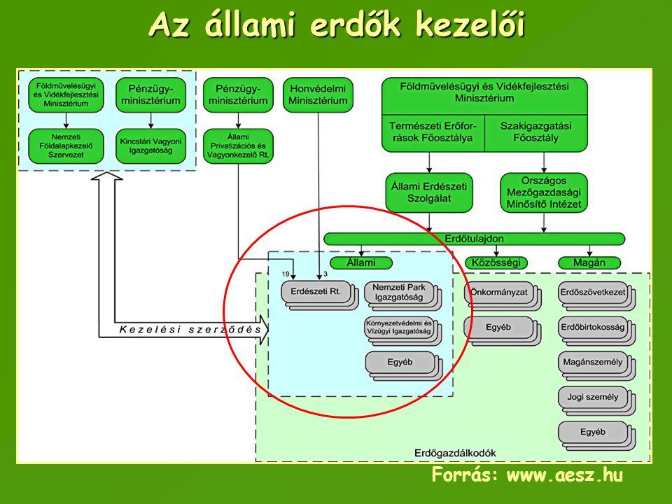 Az állami erdők kezelői