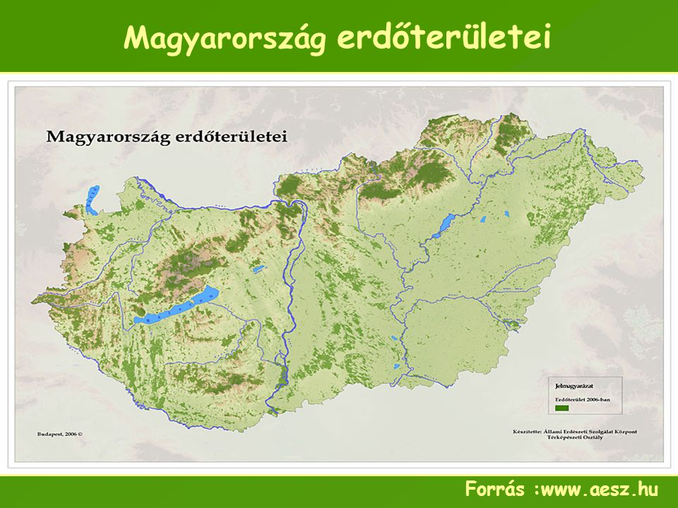 Magyarország erdőterületei