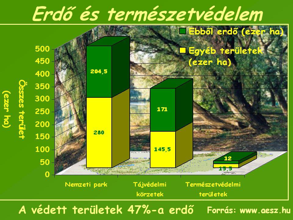 Erdő és természetvédelem