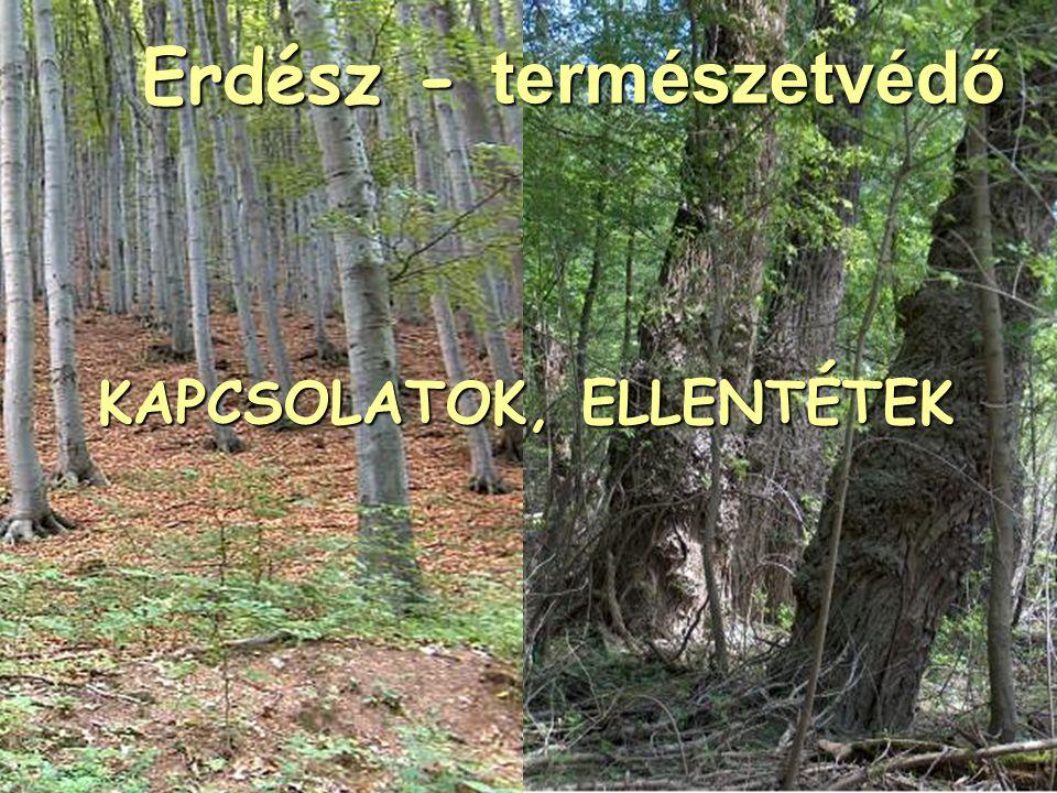 Erdész - természetvédő KAPCSOLATOK, ELLENTÉTEK