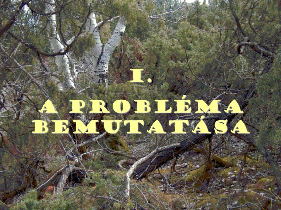 I. A probléma bemutatása