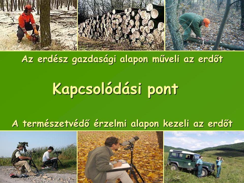 Kapcsolódási pont Az erdész gazdasági alapon műveli az erdőt