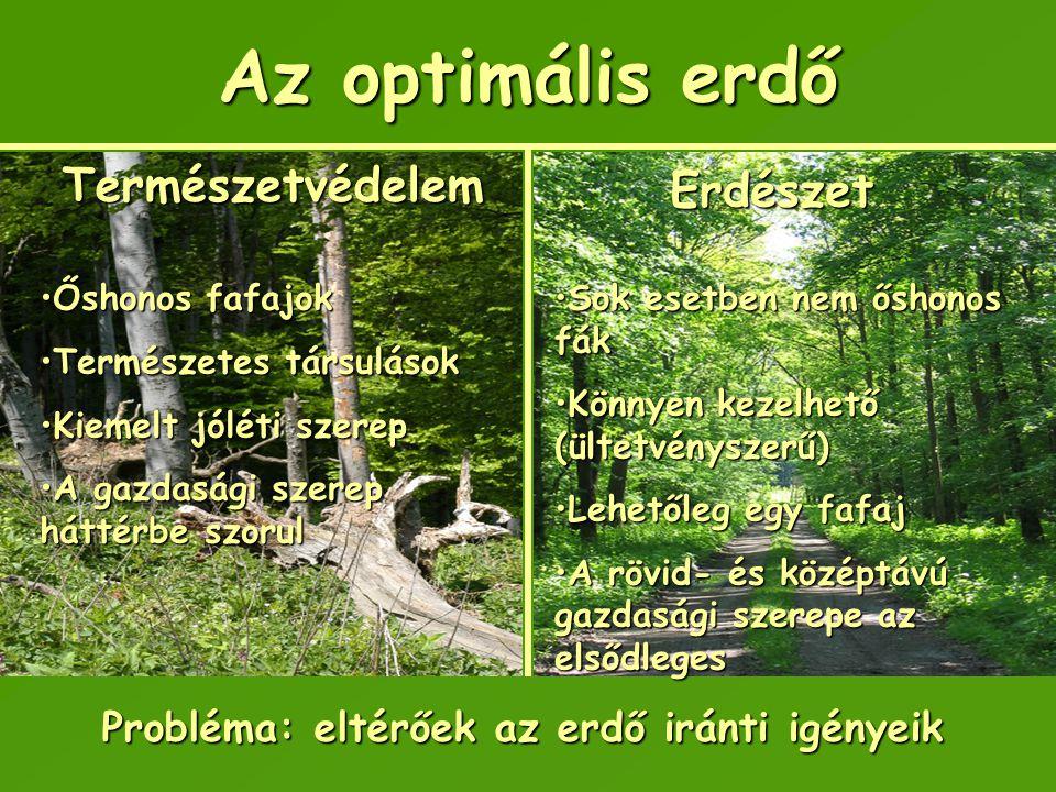Probléma: eltérőek az erdő iránti igényeik