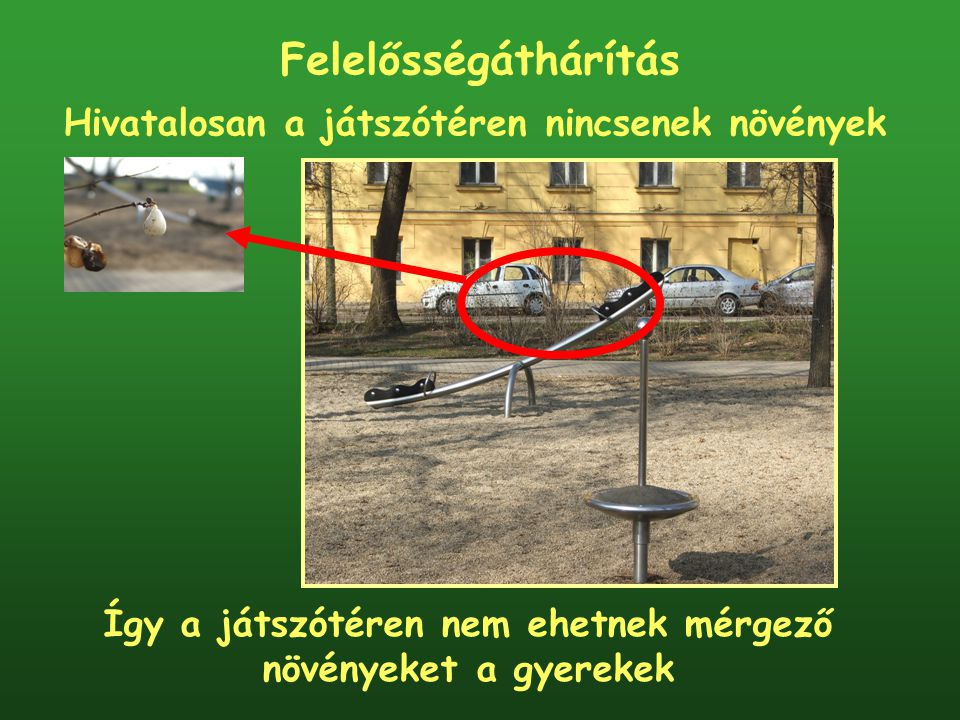 Felelősségáthárítás Hivatalosan a játszótéren nincsenek növények