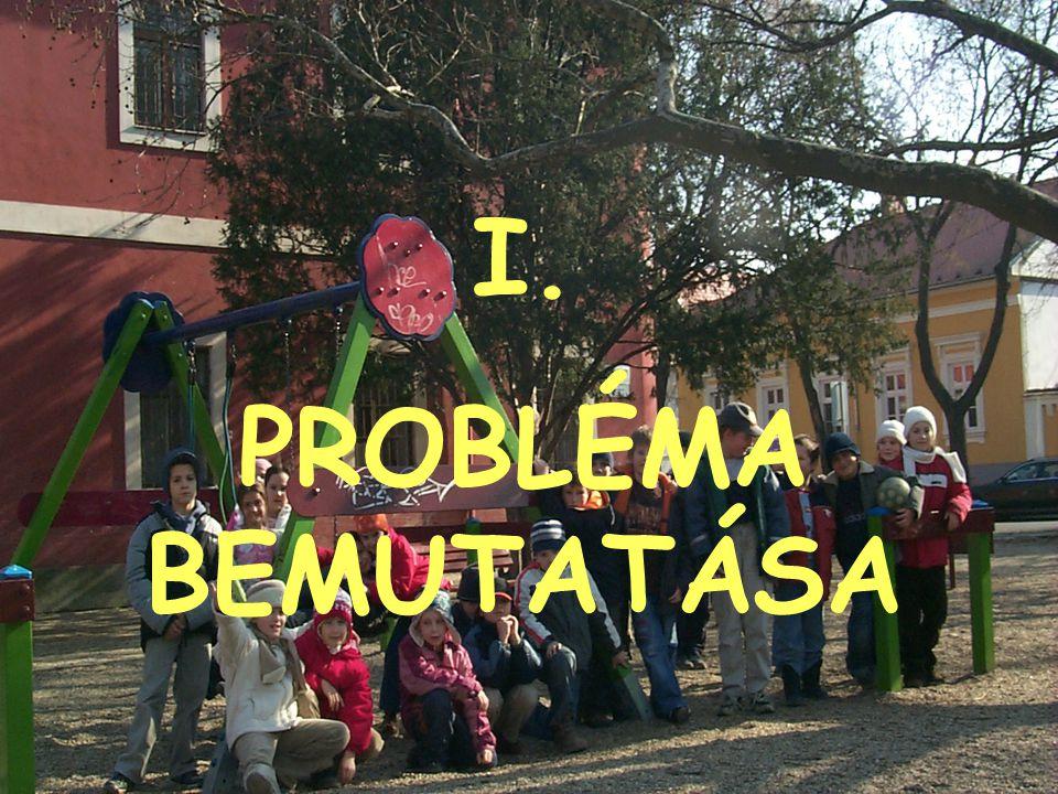 I. PROBLÉMA BEMUTATÁSA