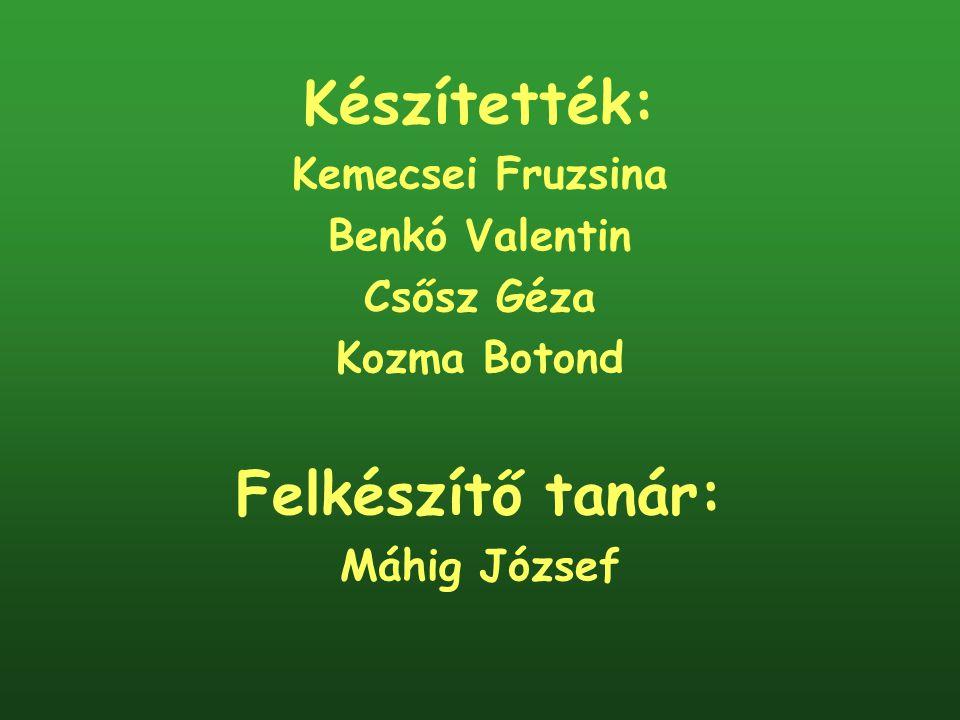 Készítették: Felkészítő tanár: Kemecsei Fruzsina Benkó Valentin