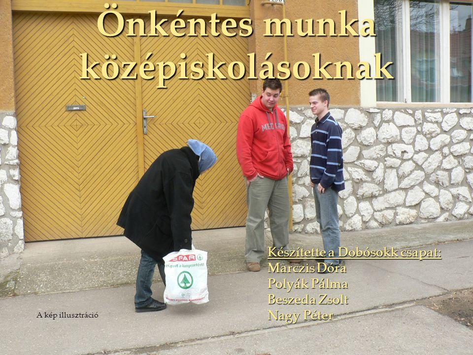 Önkéntes munka középiskolásoknak
