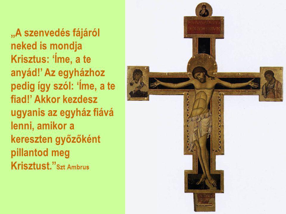 """""""A szenvedés fájáról neked is mondja Krisztus: 'Íme, a te anyád"""