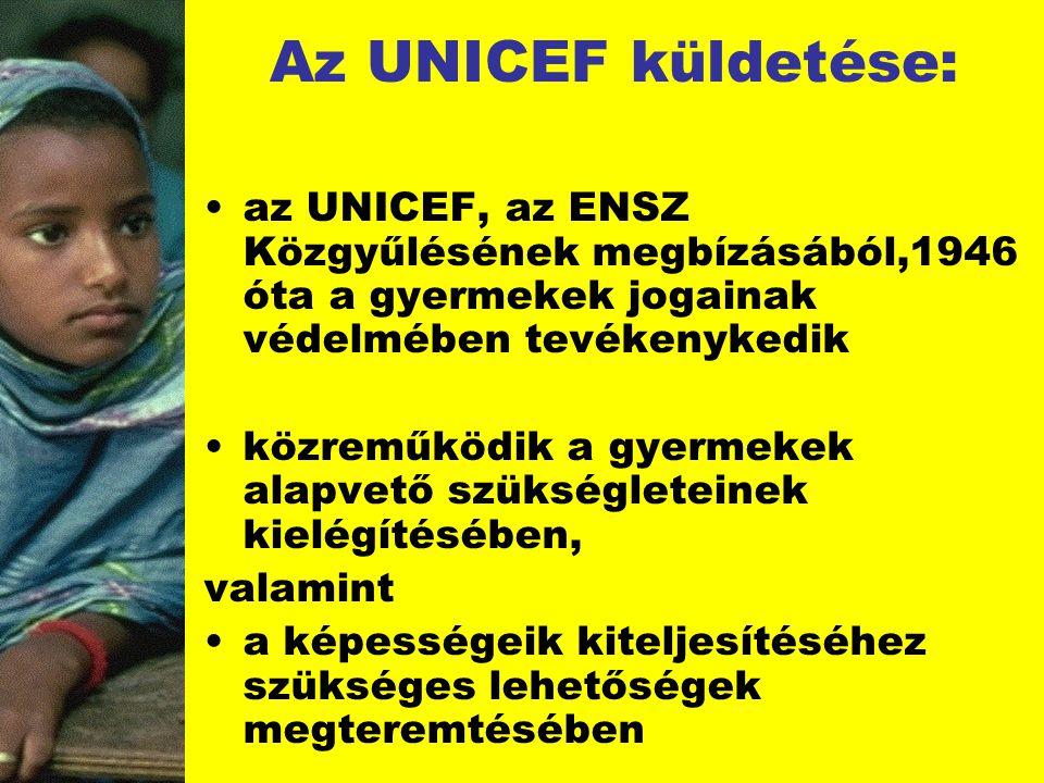 Az UNICEF küldetése: az UNICEF, az ENSZ Közgyűlésének megbízásából,1946 óta a gyermekek jogainak védelmében tevékenykedik.