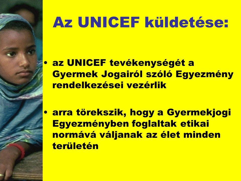 Az UNICEF küldetése: az UNICEF tevékenységét a Gyermek Jogairól szóló Egyezmény rendelkezései vezérlik.