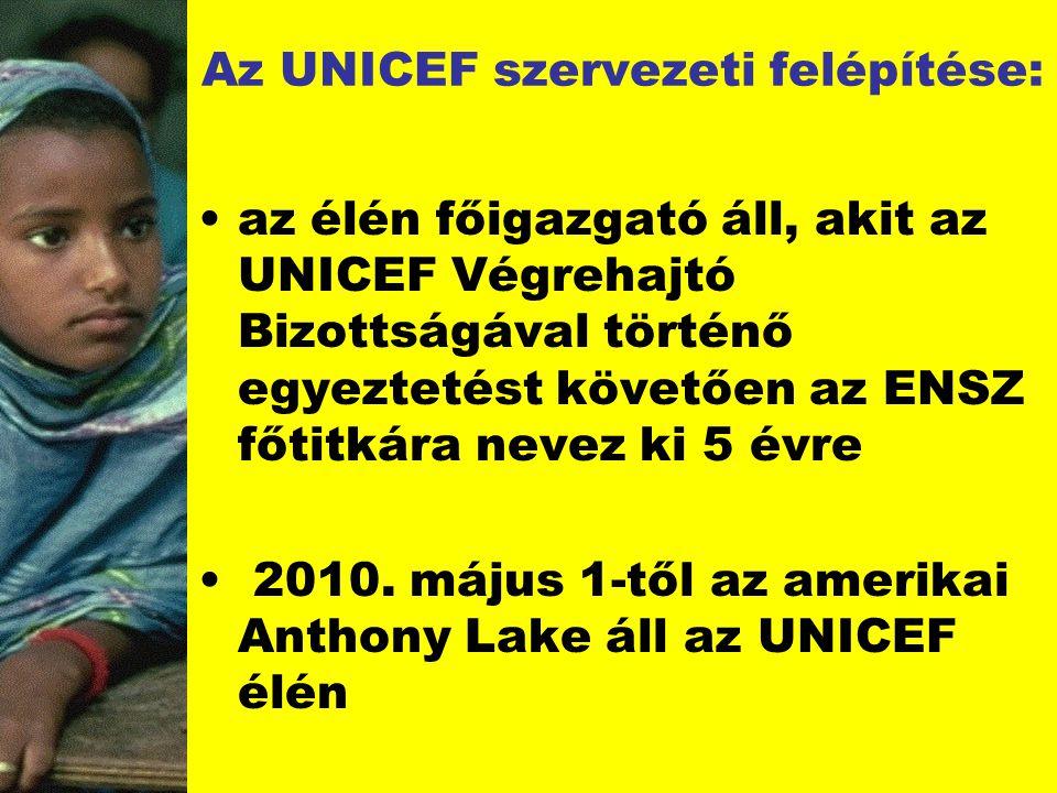 Az UNICEF szervezeti felépítése: