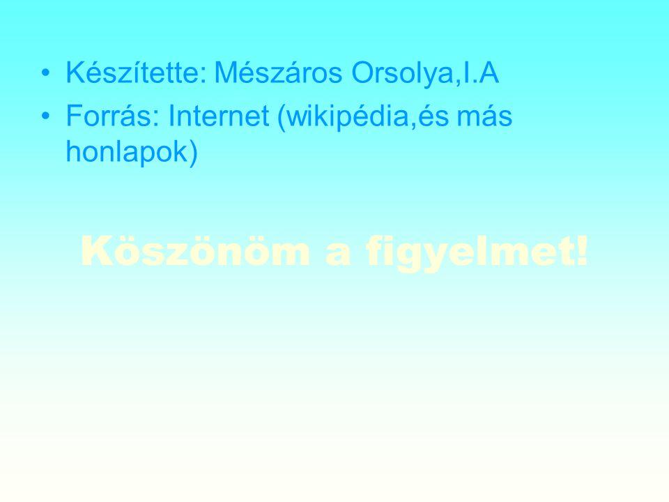 Köszönöm a figyelmet! Készítette: Mészáros Orsolya,I.A