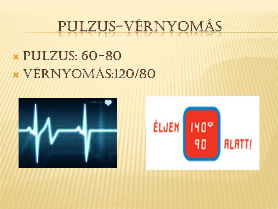 PULZUS-VéRNYOMáS Pulzus: 60-80 Vérnyomás:120/80