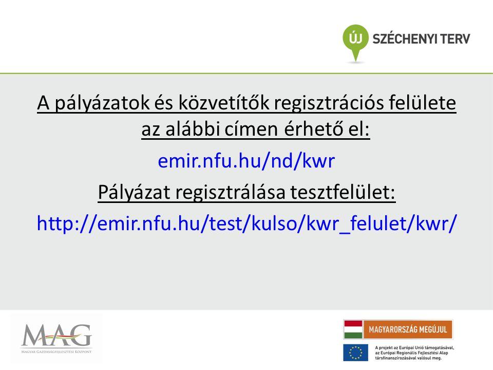 Pályázat regisztrálása tesztfelület: