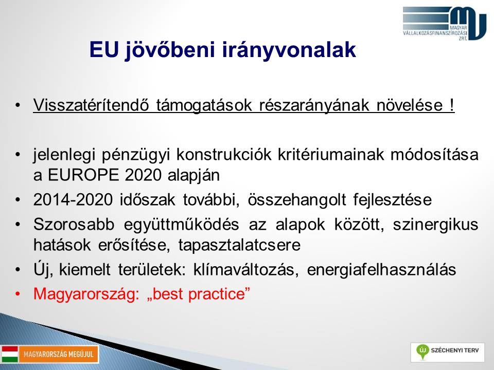 EU jövőbeni irányvonalak