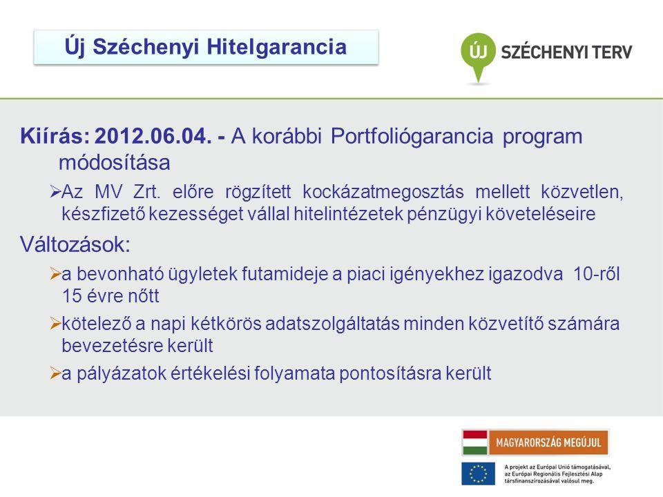 Új Széchenyi Hitelgarancia