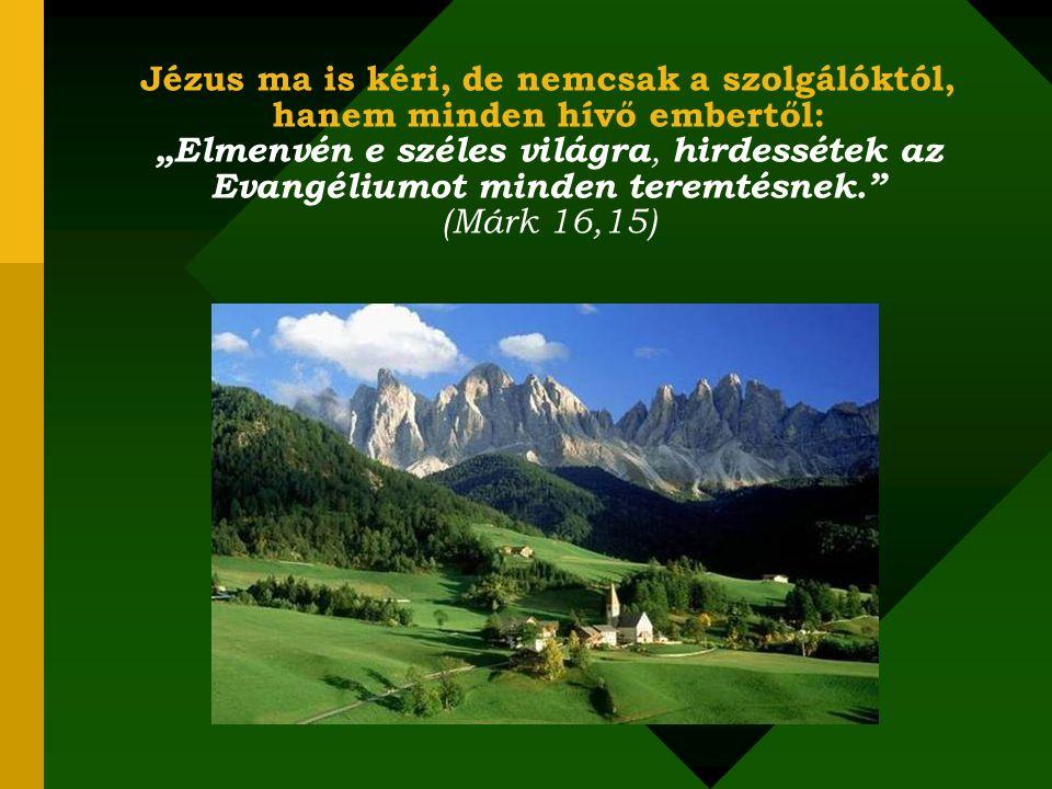 """Jézus ma is kéri, de nemcsak a szolgálóktól, hanem minden hívő embertől: """"Elmenvén e széles világra, hirdessétek az Evangéliumot minden teremtésnek. (Márk 16,15)"""