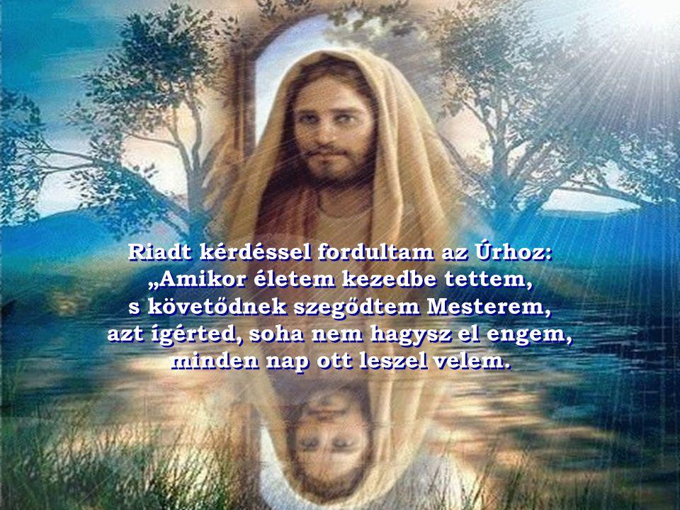 """Riadt kérdéssel fordultam az Úrhoz: """"Amikor életem kezedbe tettem, s követődnek szegődtem Mesterem, azt ígérted, soha nem hagysz el engem, minden nap ott leszel velem."""
