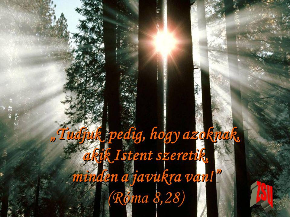 """""""Tudjuk pedig, hogy azoknak, akik Istent szeretik, minden a javukra van! (Róma 8,28)"""