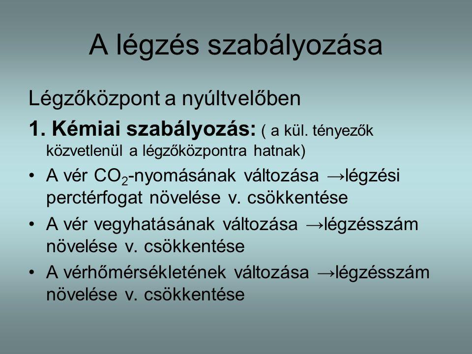 A légzés szabályozása Légzőközpont a nyúltvelőben