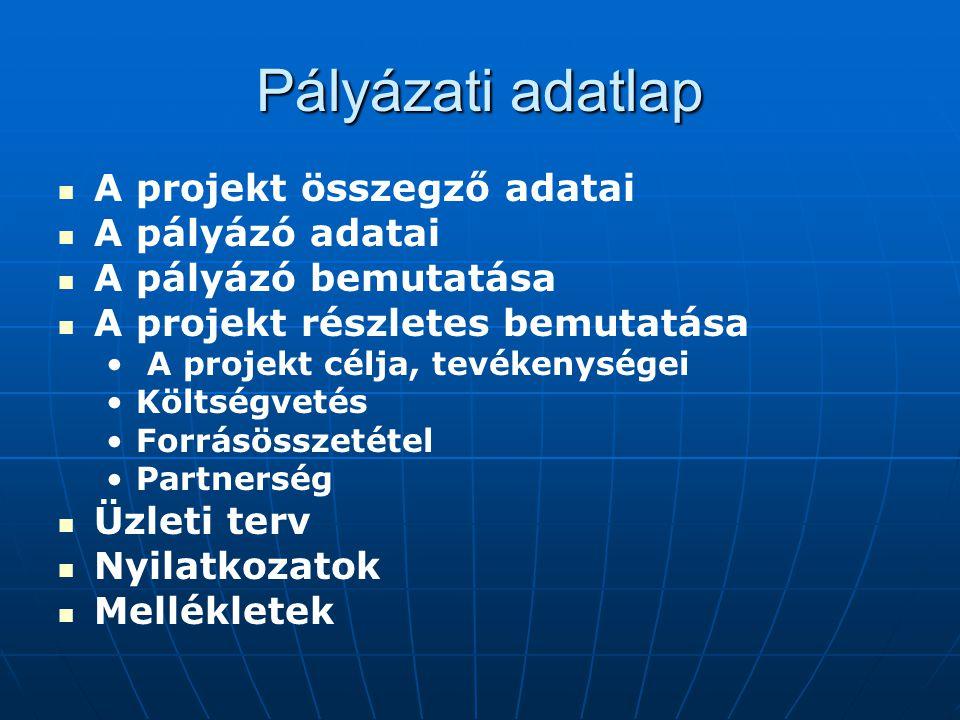 Pályázati adatlap A projekt összegző adatai A pályázó adatai