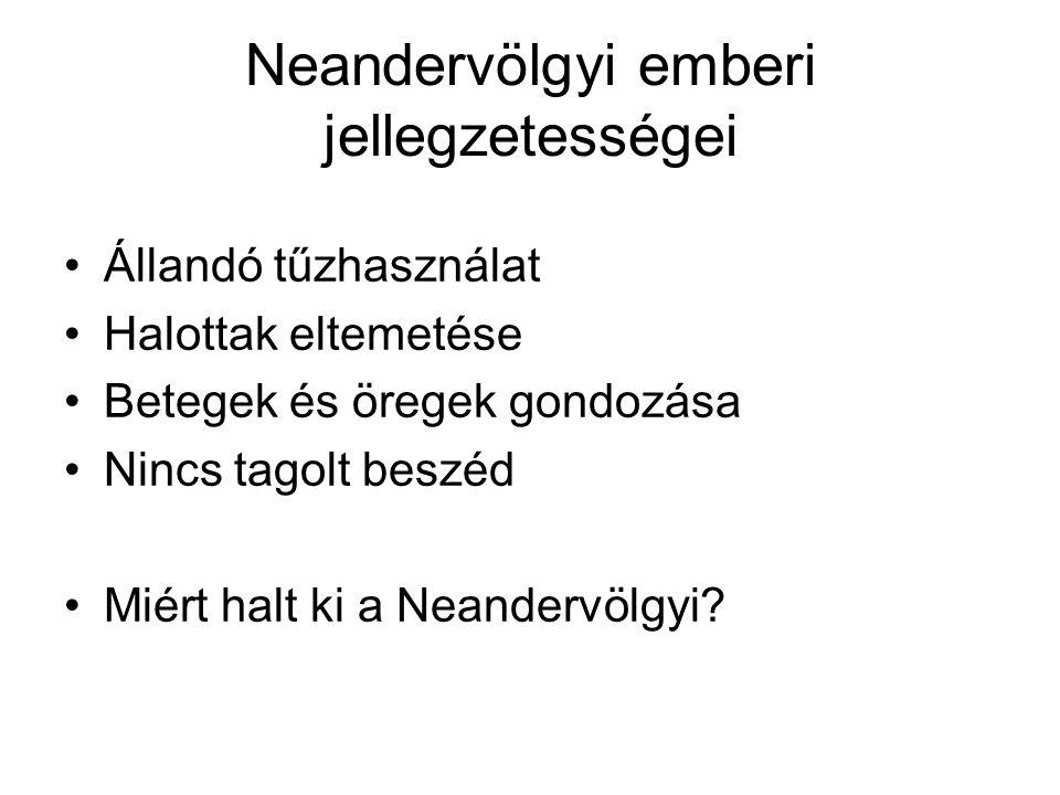Neandervölgyi emberi jellegzetességei