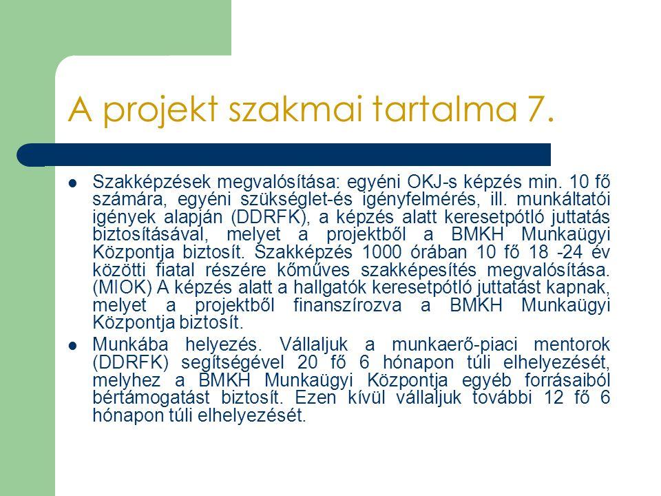 A projekt szakmai tartalma 7.