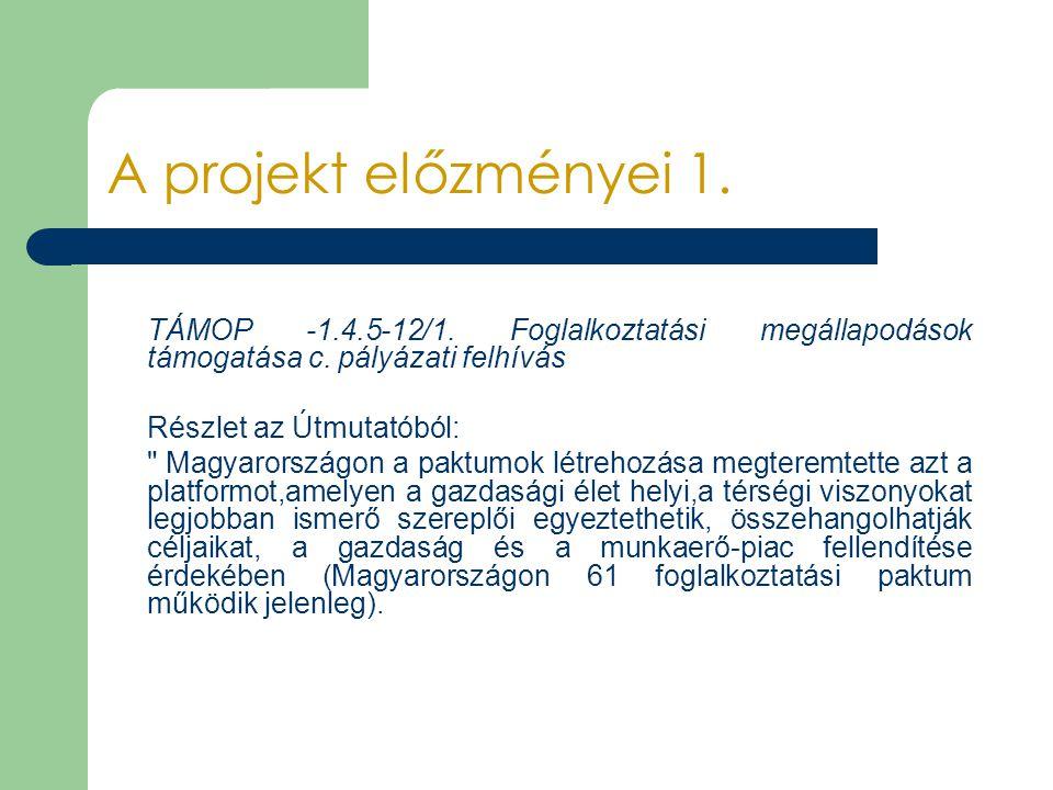 A projekt előzményei 1. TÁMOP -1.4.5-12/1. Foglalkoztatási megállapodások támogatása c. pályázati felhívás.