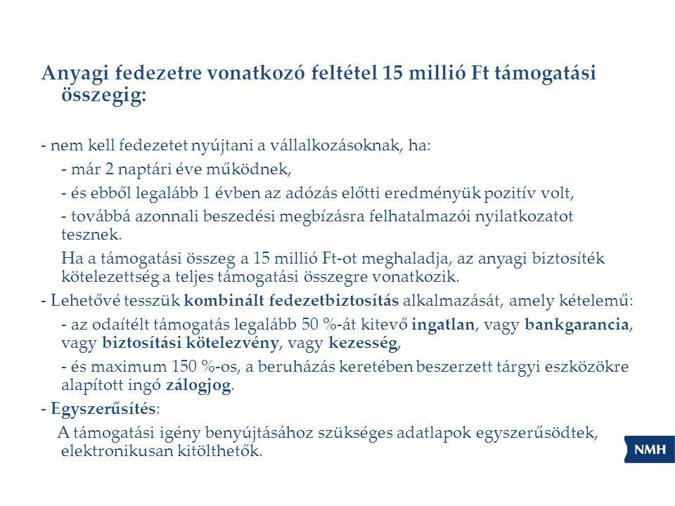 Anyagi fedezetre vonatkozó feltétel 15 millió Ft támogatási összegig: