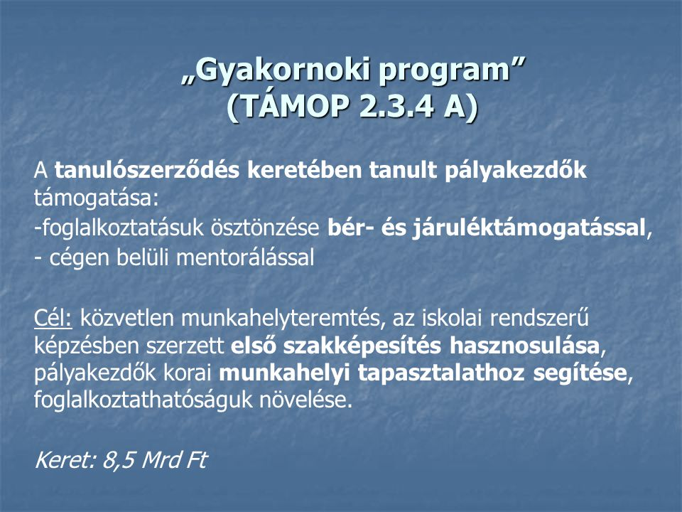 """""""Gyakornoki program (TÁMOP 2.3.4 A)"""