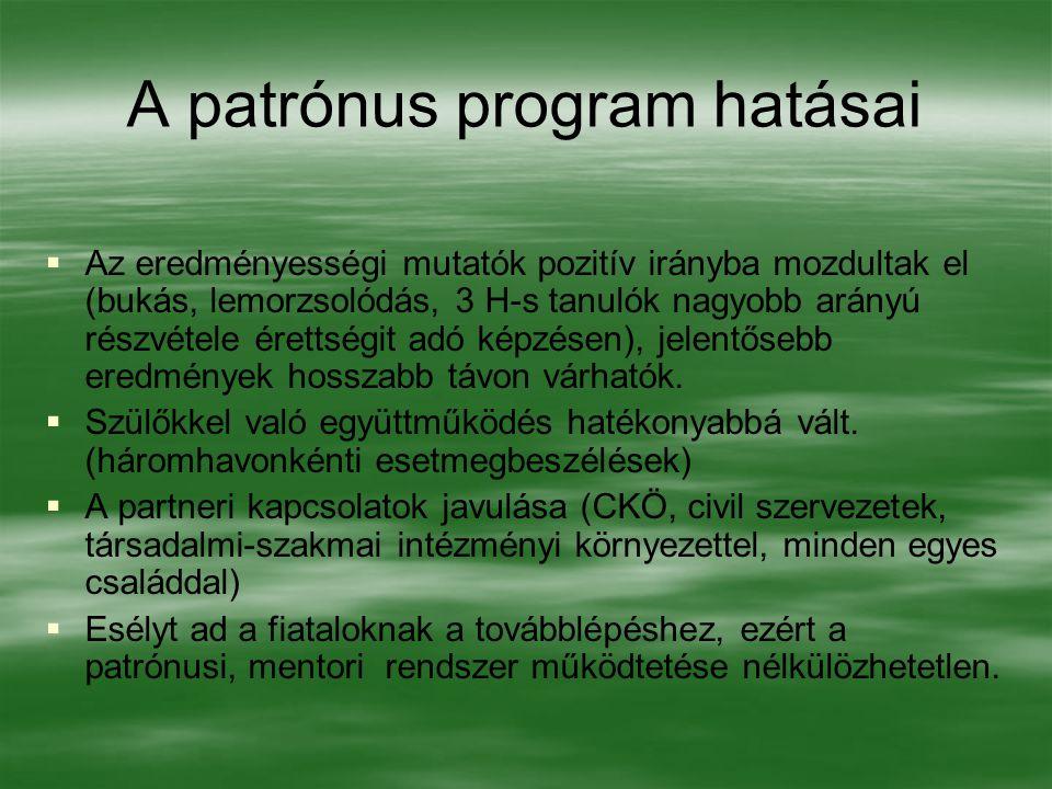 A patrónus program hatásai