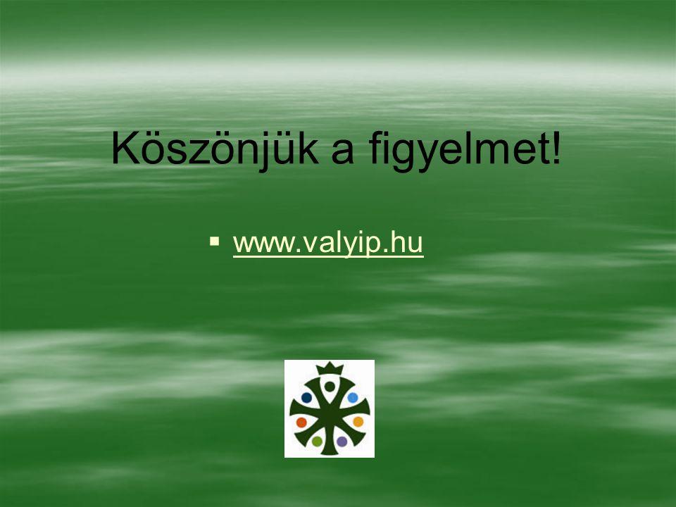Köszönjük a figyelmet! www.valyip.hu