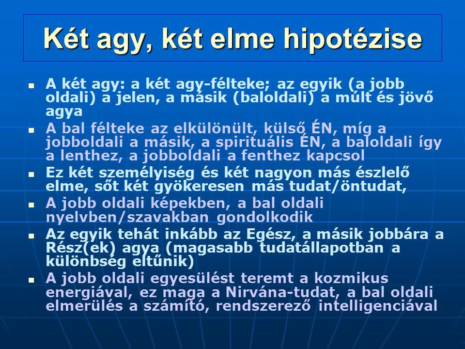 Két agy, két elme hipotézise