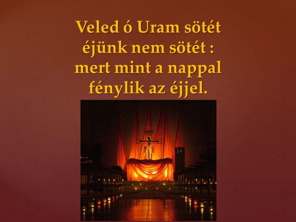 Veled ó Uram sötét éjünk nem sötét : mert mint a nappal fénylik az éjjel.